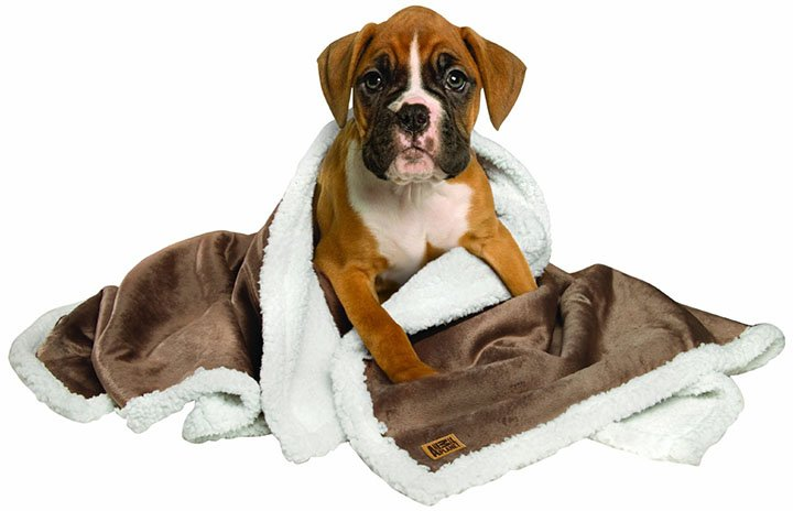 dog blankets july 2018 reviews and buyers guide With animal planet dog blanket