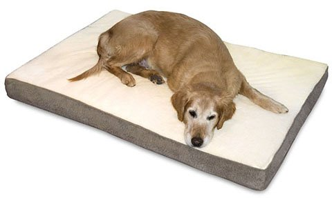 Best Dog Beds For Large Dogs Reviewed January 2019 Buyer S Guide