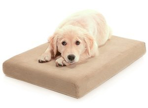 Dog Beds For Older Dogs