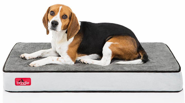 how to clean dog beds