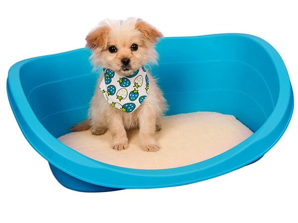 top rated chew proof tear resistant toughest dog bed reviews