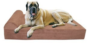 best orthopedic dog beds for large breeds