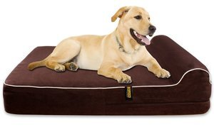 "Kopeks Extra Large 7"" Orthopedic Memory Foam Dog Bed with 3"" Pillow"