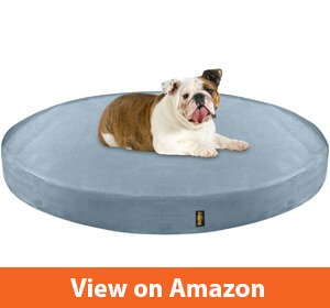 10 Best Dog Bed For Bulldogs Reviewed November 2019