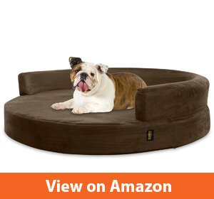 10 Best Dog Bed For Bulldogs Reviewed Sept 2019 Buyer S