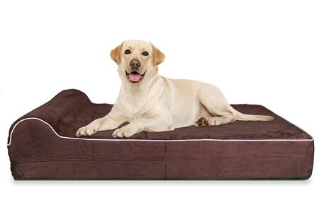 7-inch Thick High-Grade Easy to Wash Orthopedic Memory Foam Dog Bed