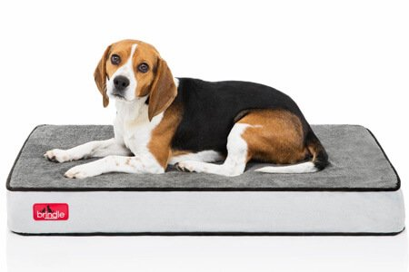 Brindle Waterproof Designer Memory Foam Pet Bed – Fully machine washable dog beds