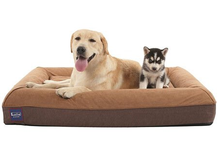 Laifug Orthopedic Memory Foam Large Sofa – Heavy-duty waterproof dog beds