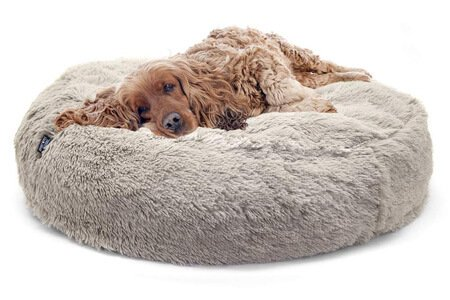 SportPet Designs Luxury Waterproof Pet Bed – Machine washable sofa bed