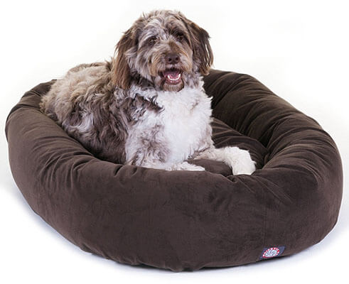 cheap dog bed