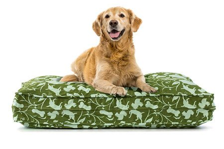 eLuxurySupply Pet Beds