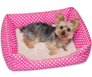 Stinky G Polka Dot Dog Bed