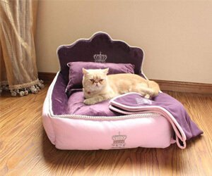 Yicat (Set of 3) Pet Bed, Quilt, and Pillow Teddy Princess Bed