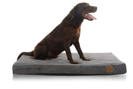 LaiFug Orthopedic Memory Foam Dog BedCrate Mat