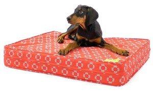 Best Orthopedic Dog Bed for Large Breeds