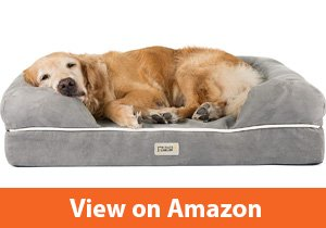 Best Budget-friendly Outdoor dog bed