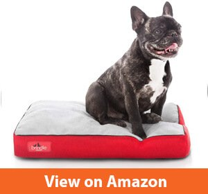 Brindle Soft Shredded Memory Foam Dog Bed Removable Washable Cover