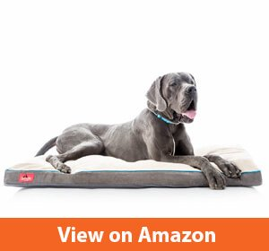 Brindle Soft Shredded Memory Foam Dog Bed with Removable Washable Cover