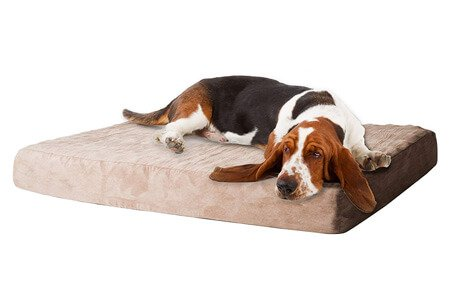 PAW Memory Foam Beagle Dog Bed with Removable Cover