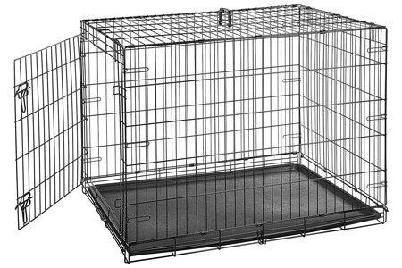 Best Dog Crates For Pitbulls