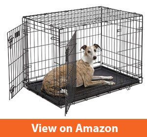 Best Dog Crate For Yorkie