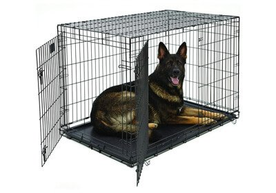 MidWest Life Stages Double Door Folding Metal Dog Crate
