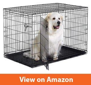 New World Folding Metal Double Door Dog Crates