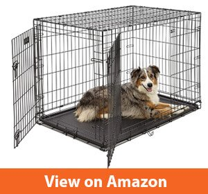 best dog crates for golden retrievers