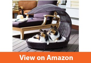 Best Wicker Outdoor Dog Bed