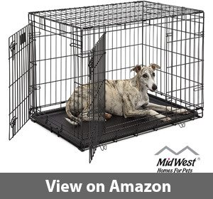Best Dog Crates For Pugs