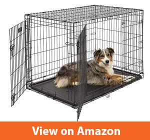 Best Dog Crates For Bulldogs