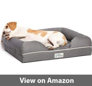 Best Orthopedic Dog Beds For Senior Dogs