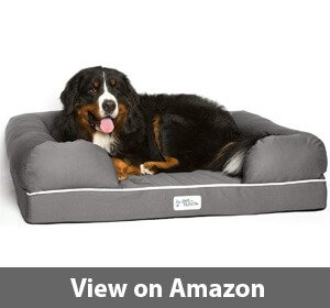 Best Waterproof Dog Beds For Dogs That Pee