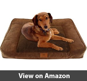 American Kennel Club – Best Memory Foam Dog Bed for Border Collies