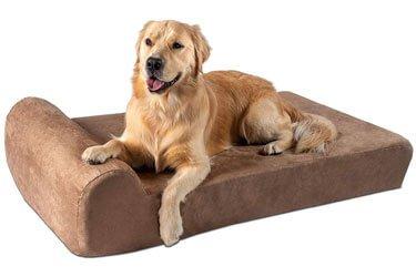 Best Dog Bed for Doberman