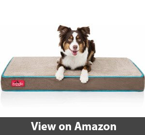 Brindle – Best Waterproof Dog bed for Border Collie