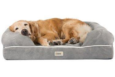 Friends Forever Doberman Dog Bed
