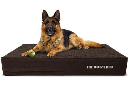 Best Dog Beds for Great Pyrenees