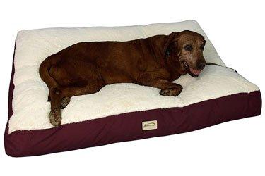 Armarkat Pet Bed Mat for Corgi