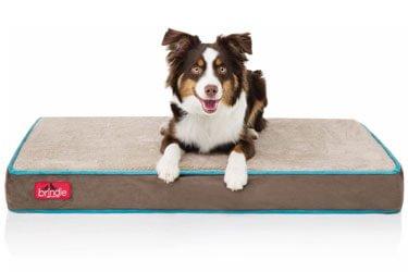 Brindle Pet Bed for Shih Tzu
