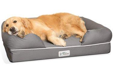 Best Dog Bed For Vizsla
